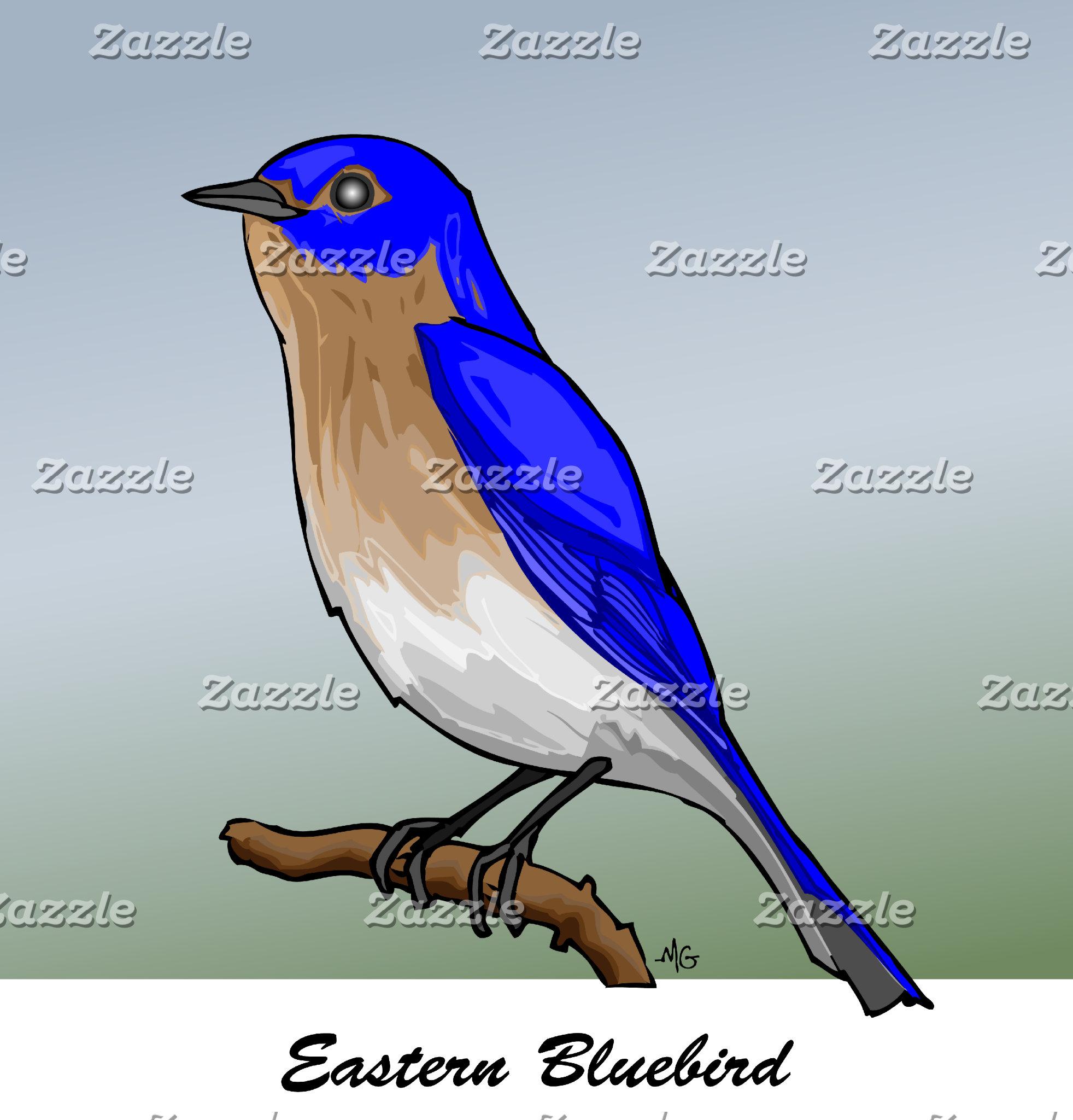 EASTERN BLUEBIRD rev.2.0