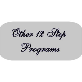 Other 12 Step Programs