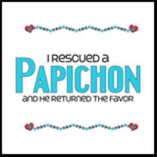 I Rescued a Papichon (Male Dog)