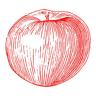 Candy Apple Red Letterpress Apple