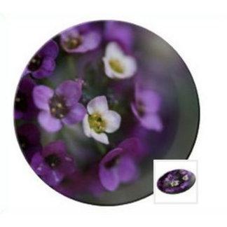 Plates Porcelain Small