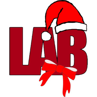 LAB  XMAS CHRISTMAS SANTA HAT CLINICAL SCIENTIST