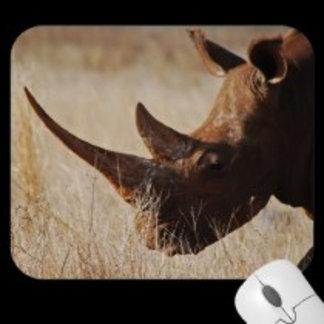 * Rhinoceros