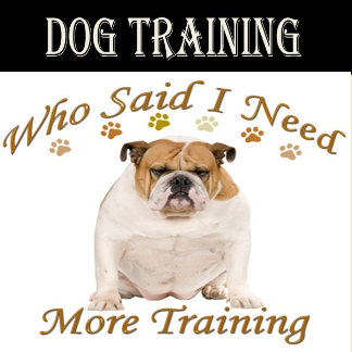 WHO NEEDS MORE TRAINING