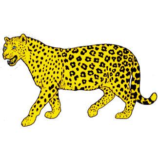 CATS(FELINES)-LIONS/LEOPARDS/CHEETAHS/CATS ETC