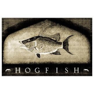 Hogfish Vintage Black & White
