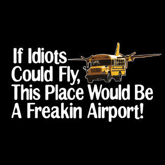 If Idiots Could Fly