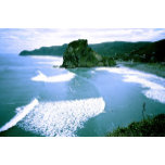 piha surfing 01280505.jpg