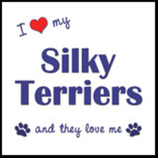 I Love My Silky Terriers (Multiple Dogs)
