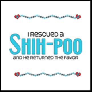 I Rescued a Shih-Poo (Male Dog)