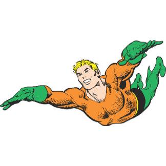 Aquaman Soars