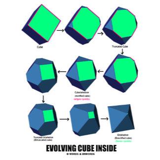 Evolving Cube Inside (Geometry)