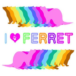 Colorful ferret (4)
