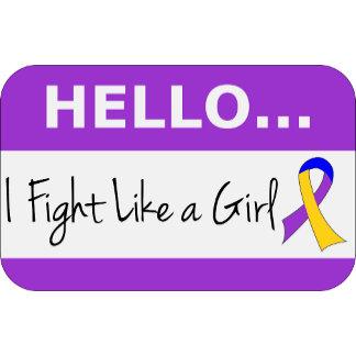 Bladder Cancer I Fight Like A Girl