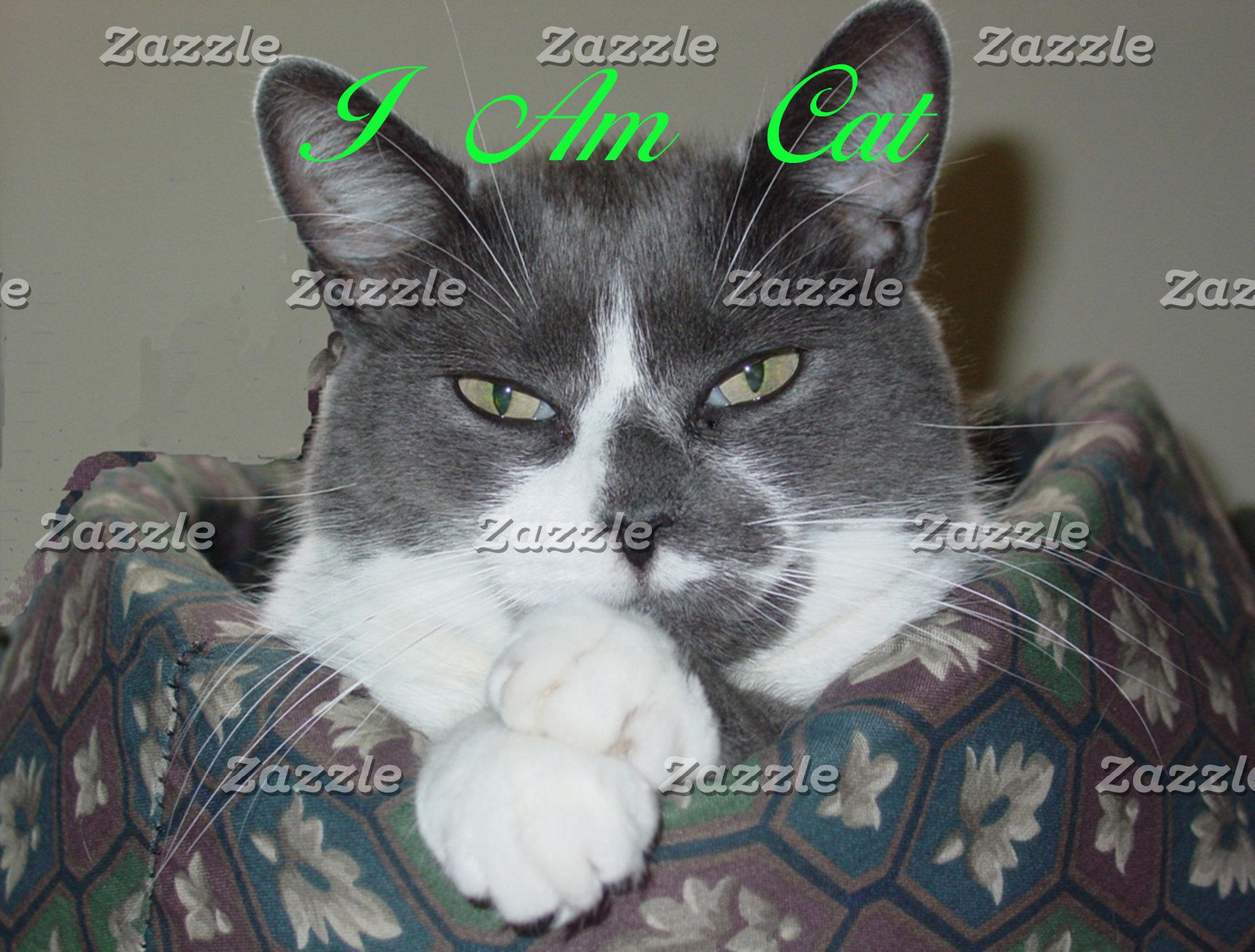 I Am Cat...