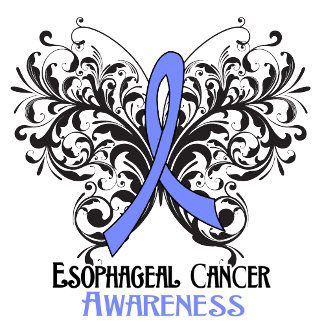 Butterfly Esophageal Cancer Awareness