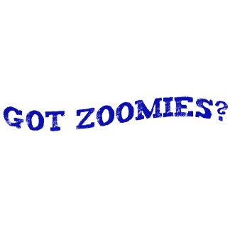 Got Zoomies?