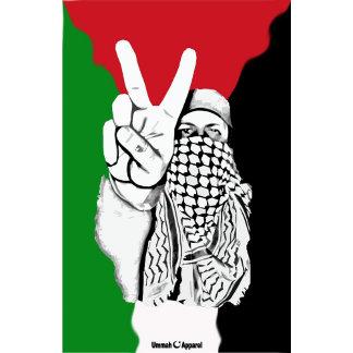 Palestine Victory Flag