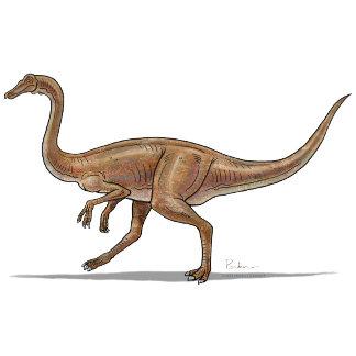 Gallimimus Dinosaur