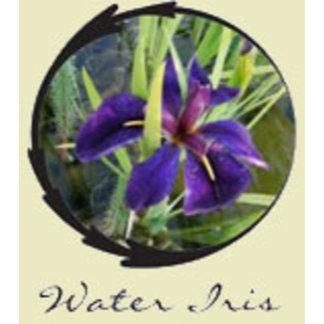 Black Gamecock Iris Gifts