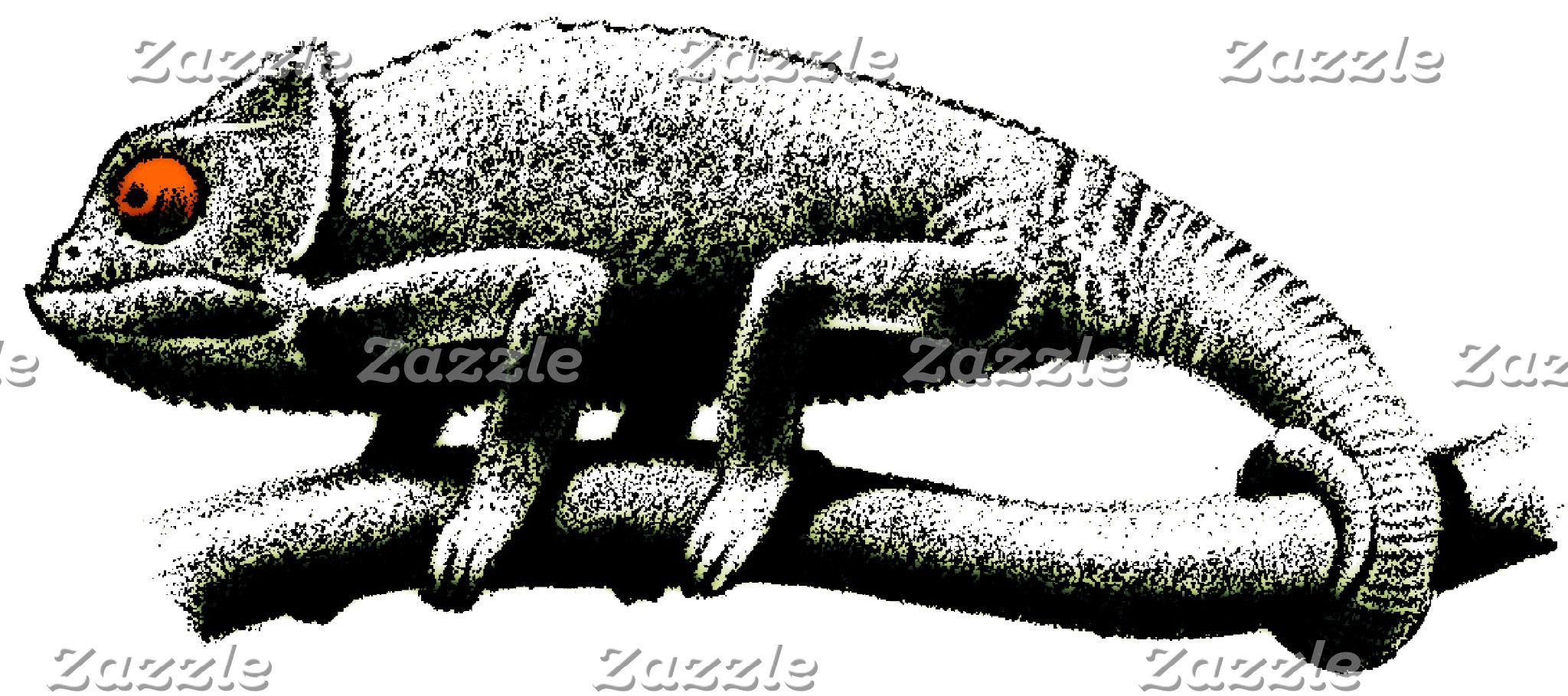 REPTILES-LIZARDS/TURTLES ETC