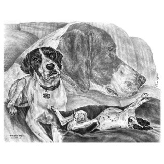 Dog Note Cards & Greeting Cards