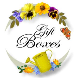 Gift/Trinket Boxes
