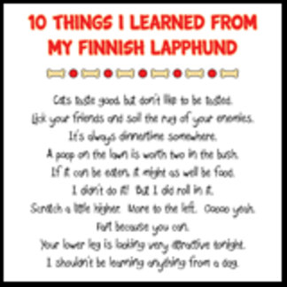 10 Things I Learned From My Finnish Lapphund Joke