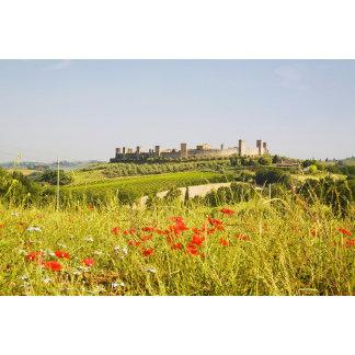 Italy, Monteriggioni, Field View of