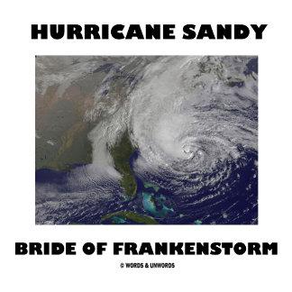Hurricane Sandy Bride Of Frankenstorm