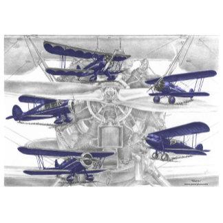Waco Biplane Art