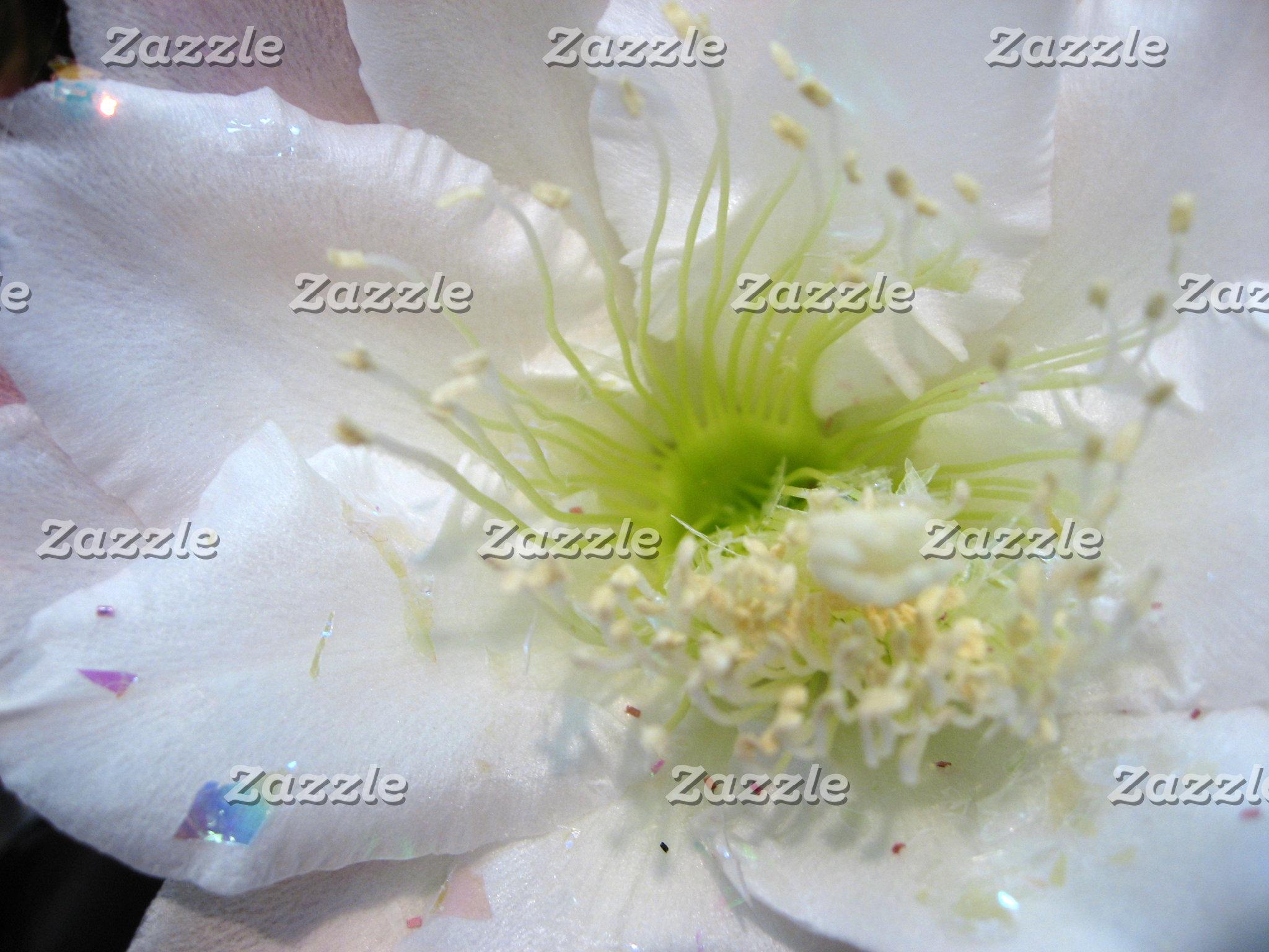 POSTAGE Wedding Flowers