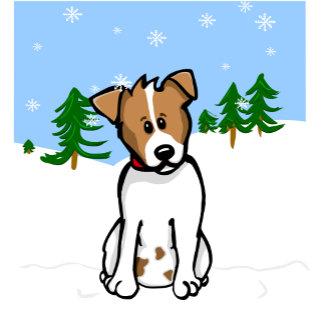Jack Russell Snow