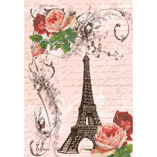 Eiffel Tower & Roses