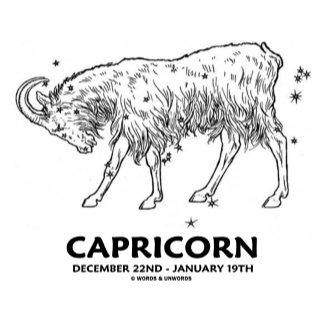 Capricorn (December 22nd - January 19th)