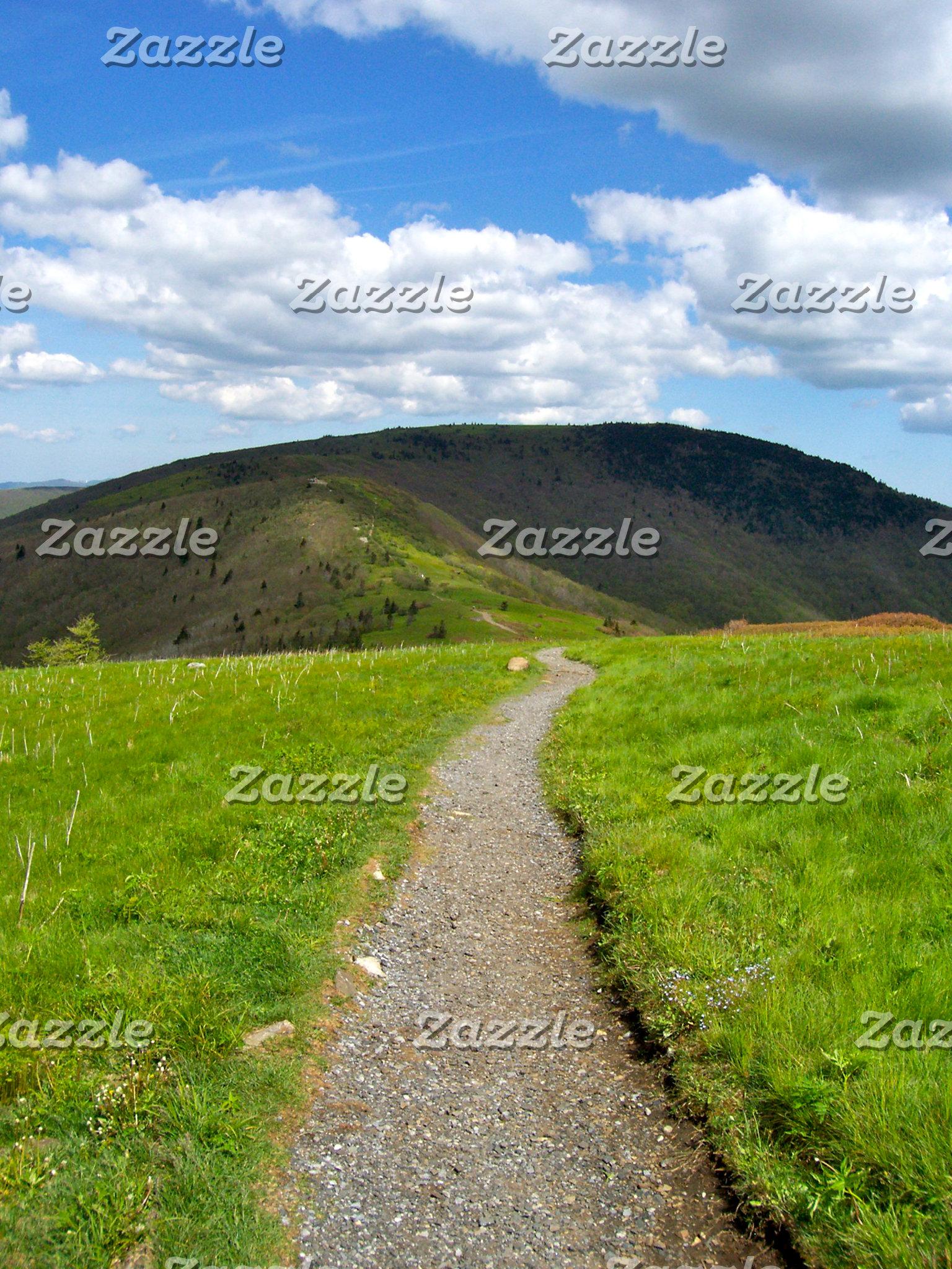 Roan Bald Trail