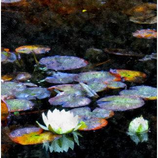 Lotus Hearts