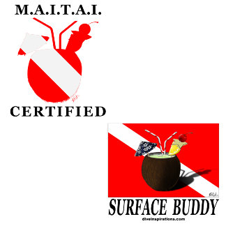 M.A.I.T.A.I. Certified Surface Buddy