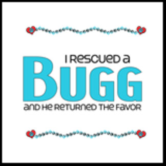 I Rescued a Bugg (Male Dog)