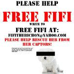 free-fifi.jpg