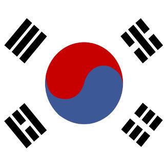 South Korea High quality Flag