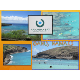 HAWAII COLLAGE #12