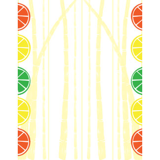 Citrus Fruit Slices and Bamboo Background