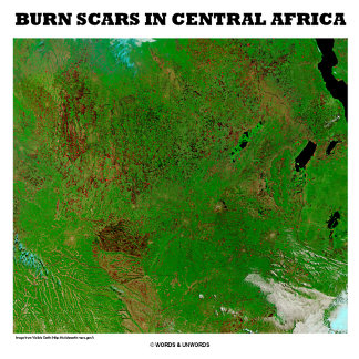 Burn Scars In Central Africa (Picture Earth)