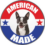 American_Made_Boston_terrier.png