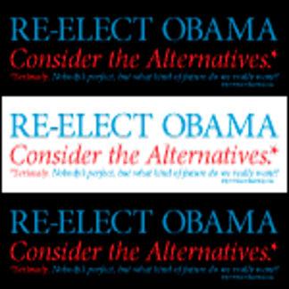 O44+4: Re-Elect Obama