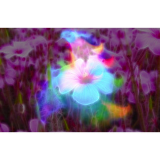 FlowerImplosion 2