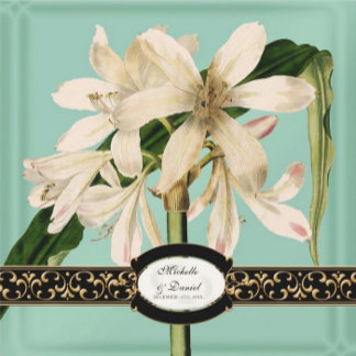 Lily Baroque Vintage -Mint