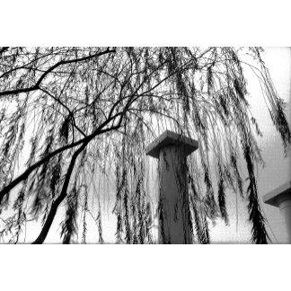 Column Under Weeping tree