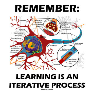 Remember: Learning Is An Iterative Process Synapse